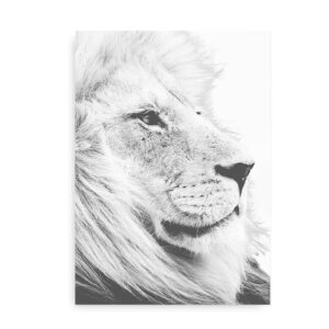 Lion Heart - plakat med løve